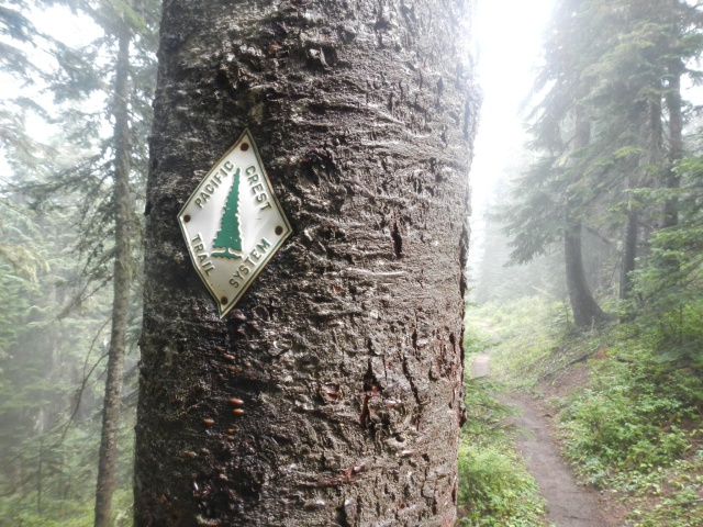 Old school PCT sign