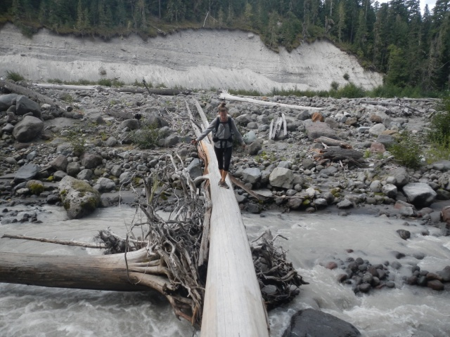 Log crossing on the old PCT